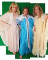 Sprookjes elfje kostuum huren 1245