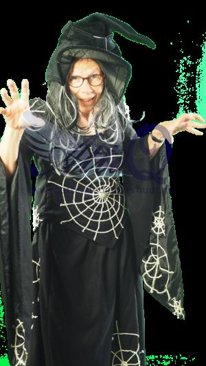 Sprookjes kostuum huren 612 Heks spinneweb