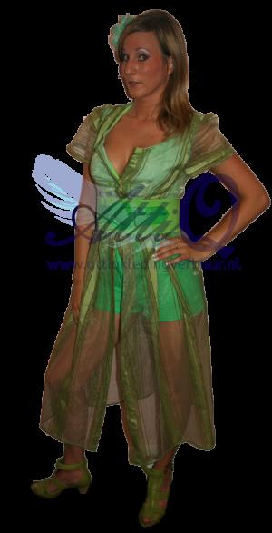 Musical Wizz kostuum 700